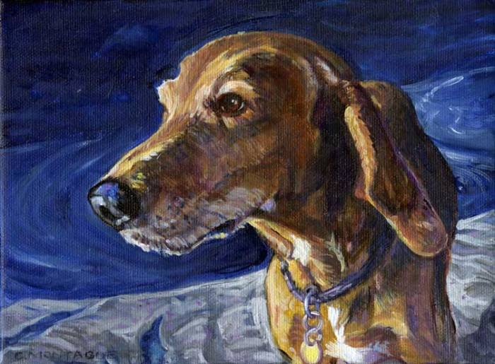 Pet portrait oil painting commission of a dog by Christine Montague.