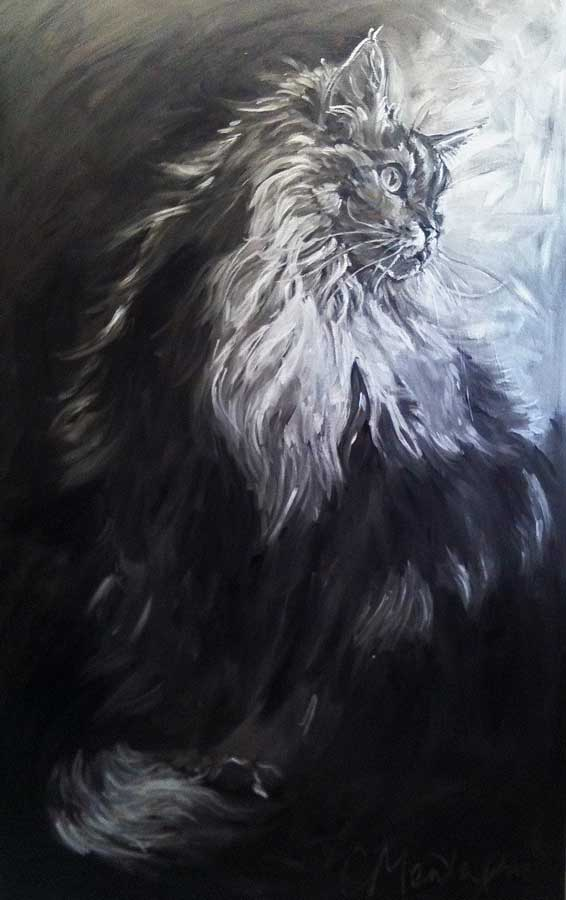 Main Coon cat portrait availble for sale by Christine Montague,  Canada.